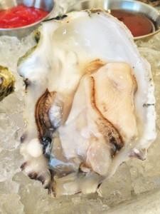Oysters + happiness at The Hungry Car Santa Barbara