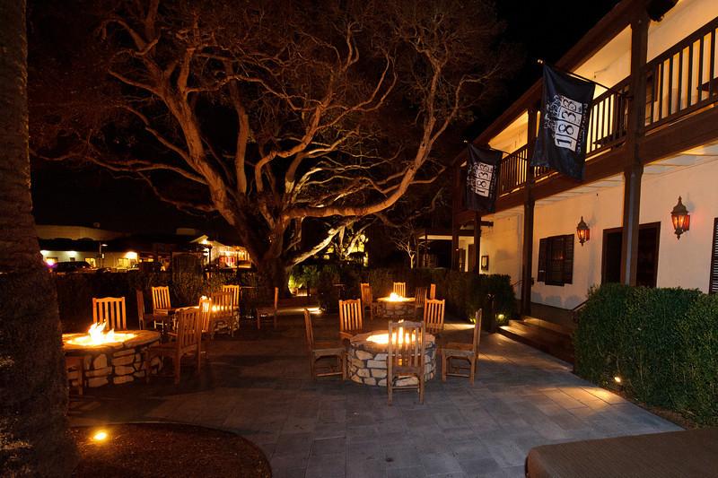Restaurant 1833.Exterior Tree 1 small