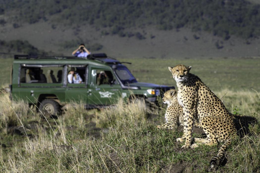 masai mara 2017 02 811