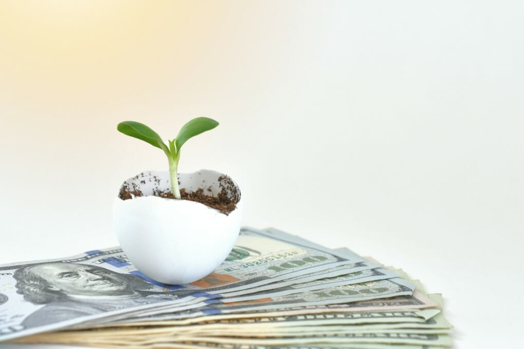 financial growth concept a sprout growing out of an eggshell on a stack of cash dollars bills growth t20 YE3Ae1
