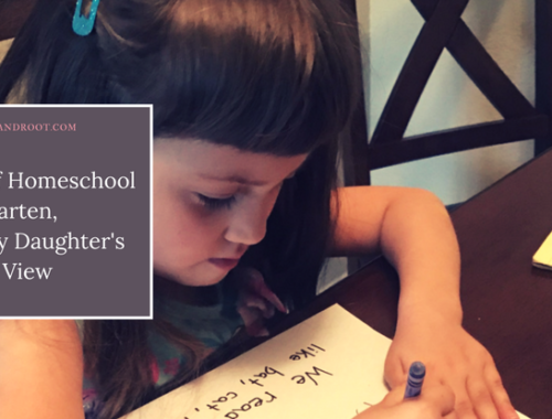 A Day of Homeschool Kindergarten, From My Daughter's Point of View