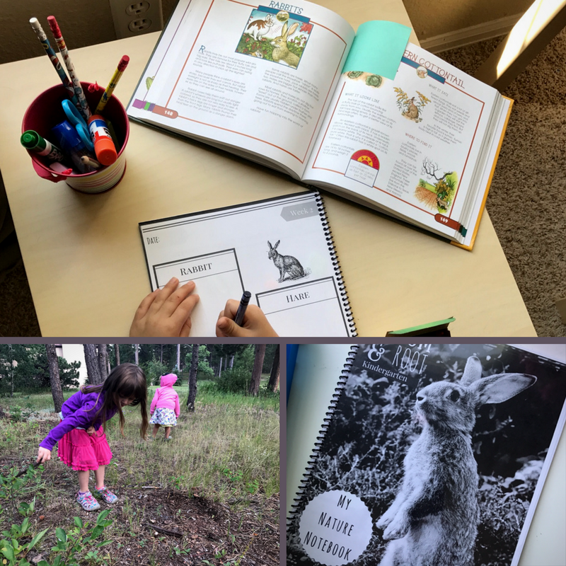 Guided Nature Study