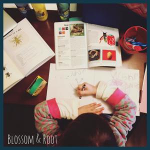 winter rhythm charlotte mason unschool homeschool