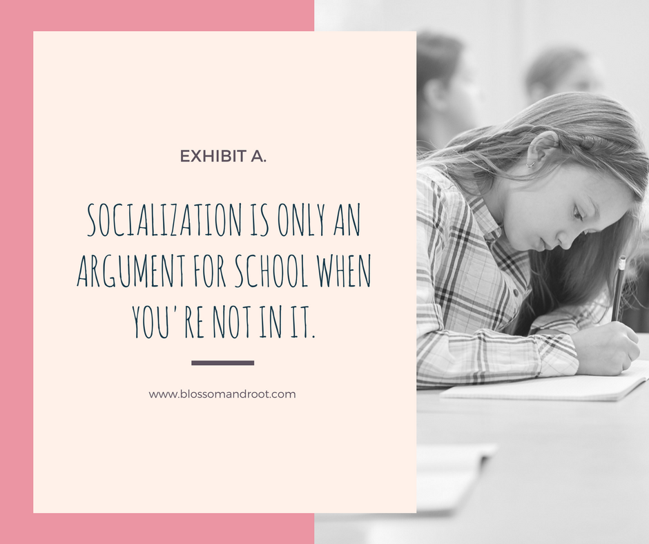 socialization and homeschool