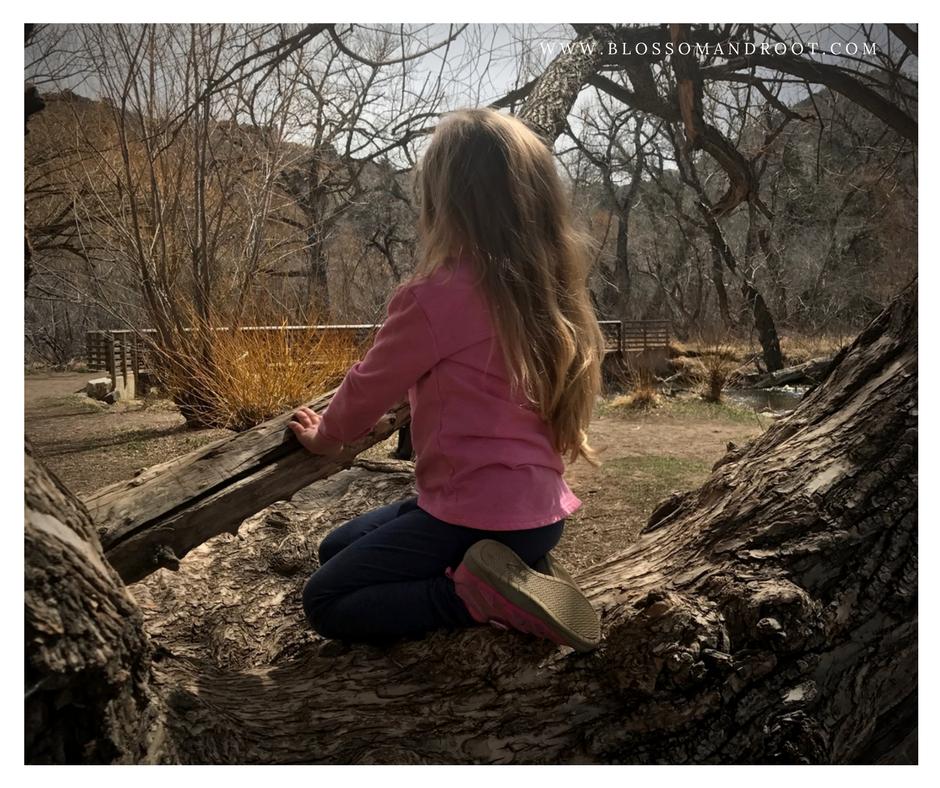 charlotte mason early years nature study