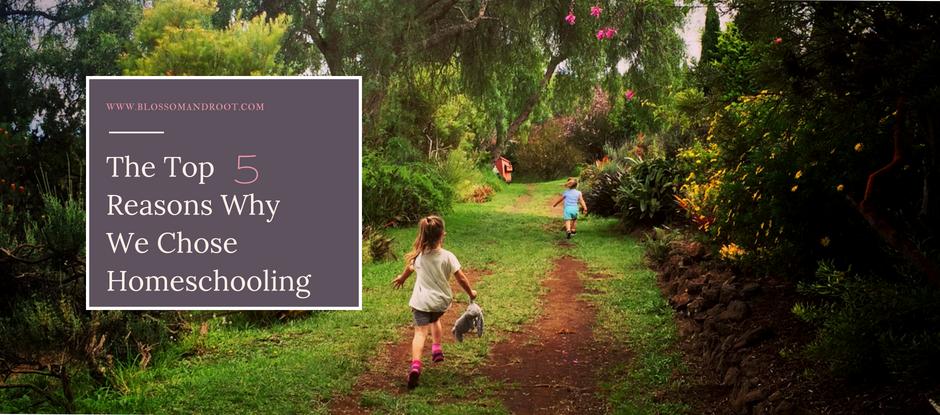 reasons for homeschooling