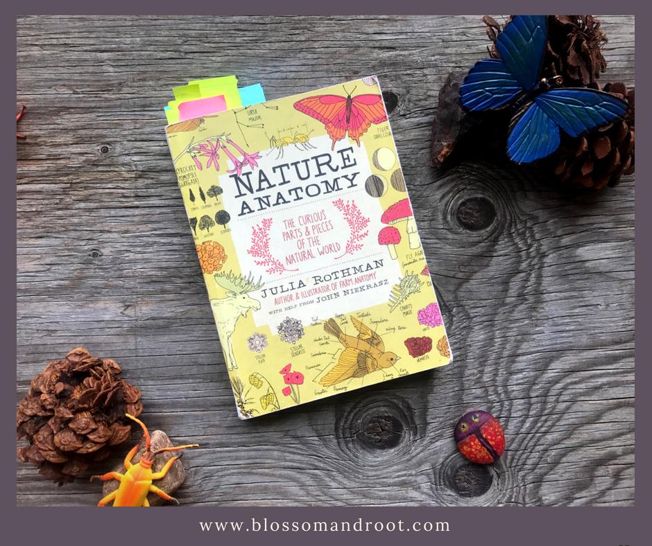 nature study books