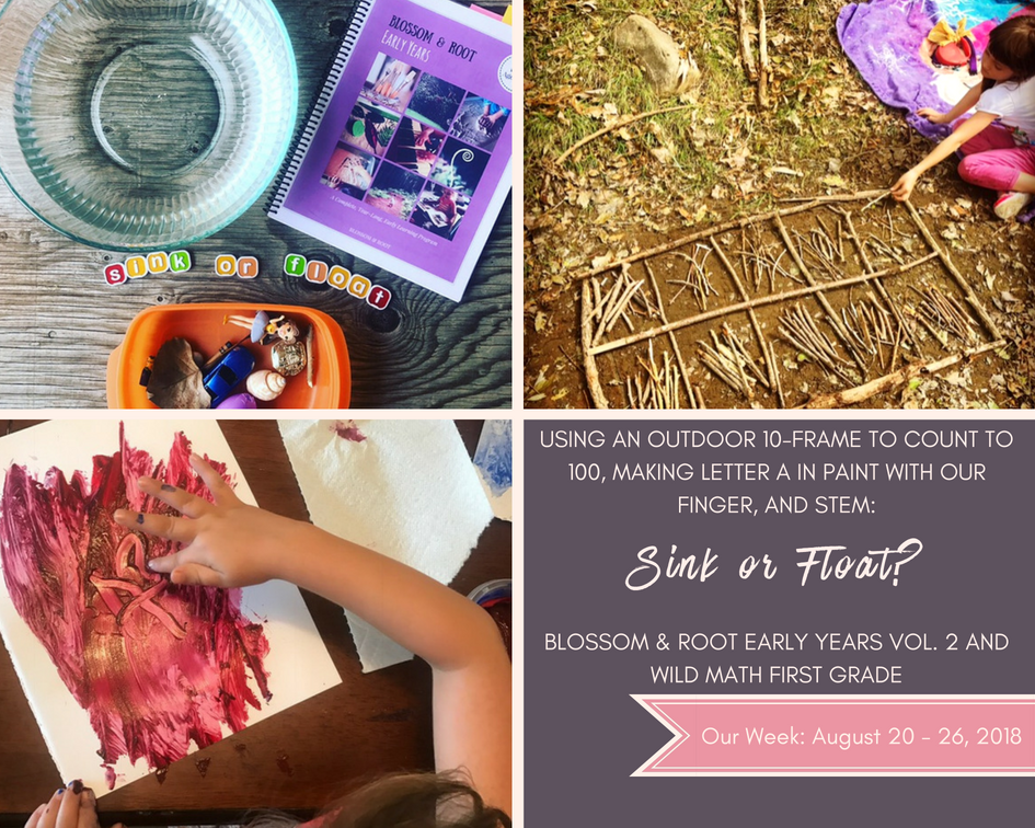 blossom and root early years homeschool