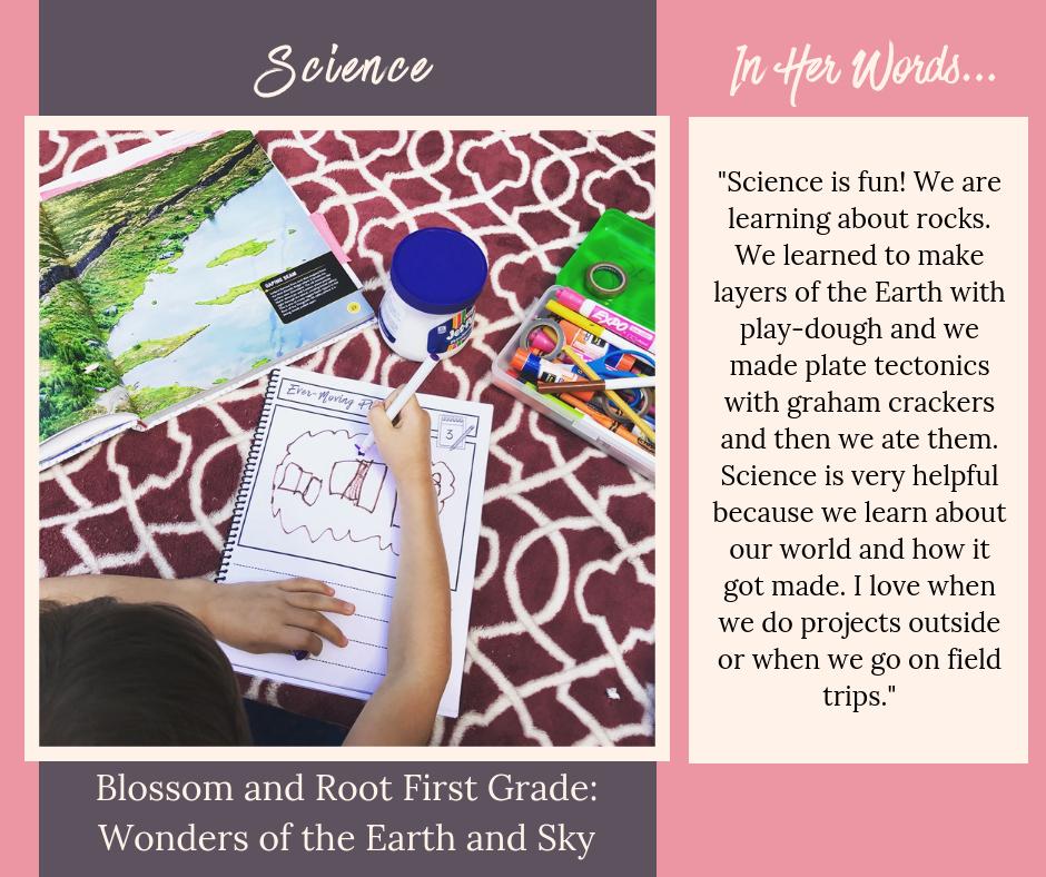 secular homeschool first grade