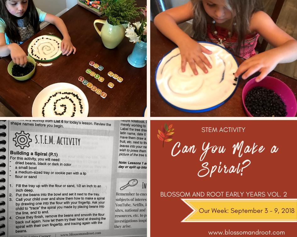 secular homeschool stem activities