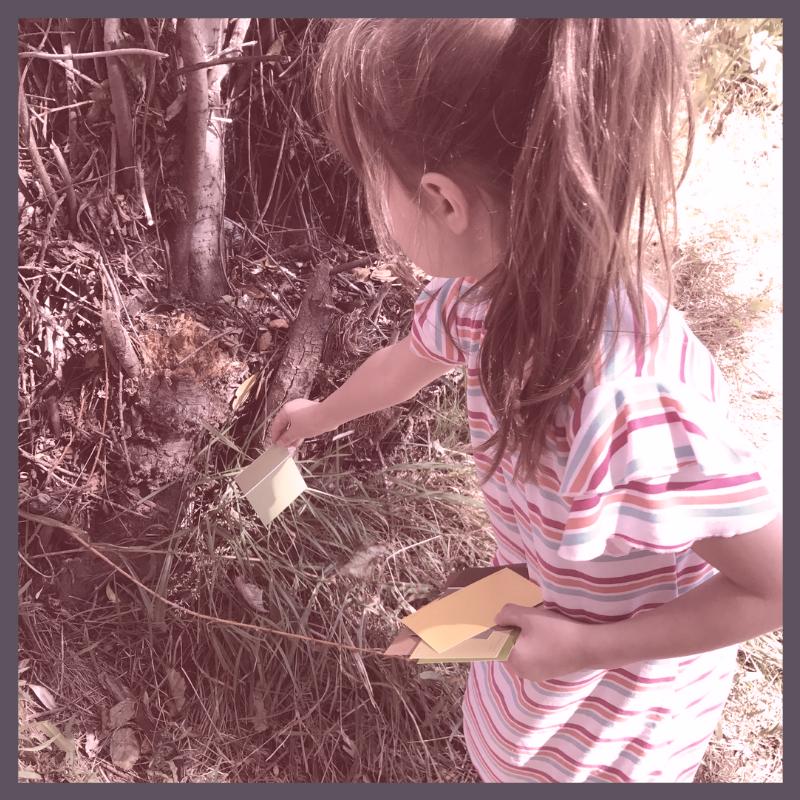 nature study curriculum