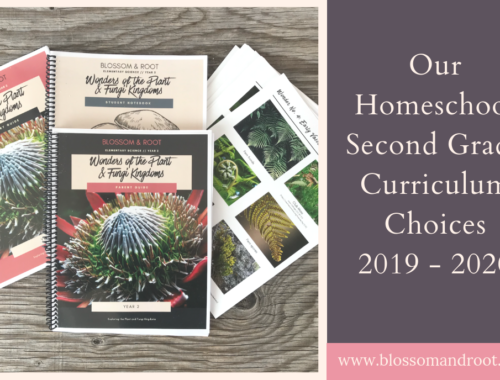 second grade curriculum choices