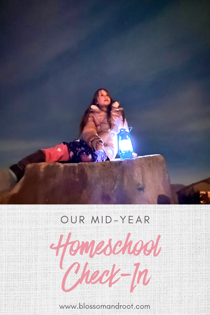 Our Mid-Year Homeschool Check-In