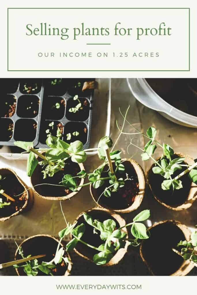 Income on 1.25 acres-selling plants for profit