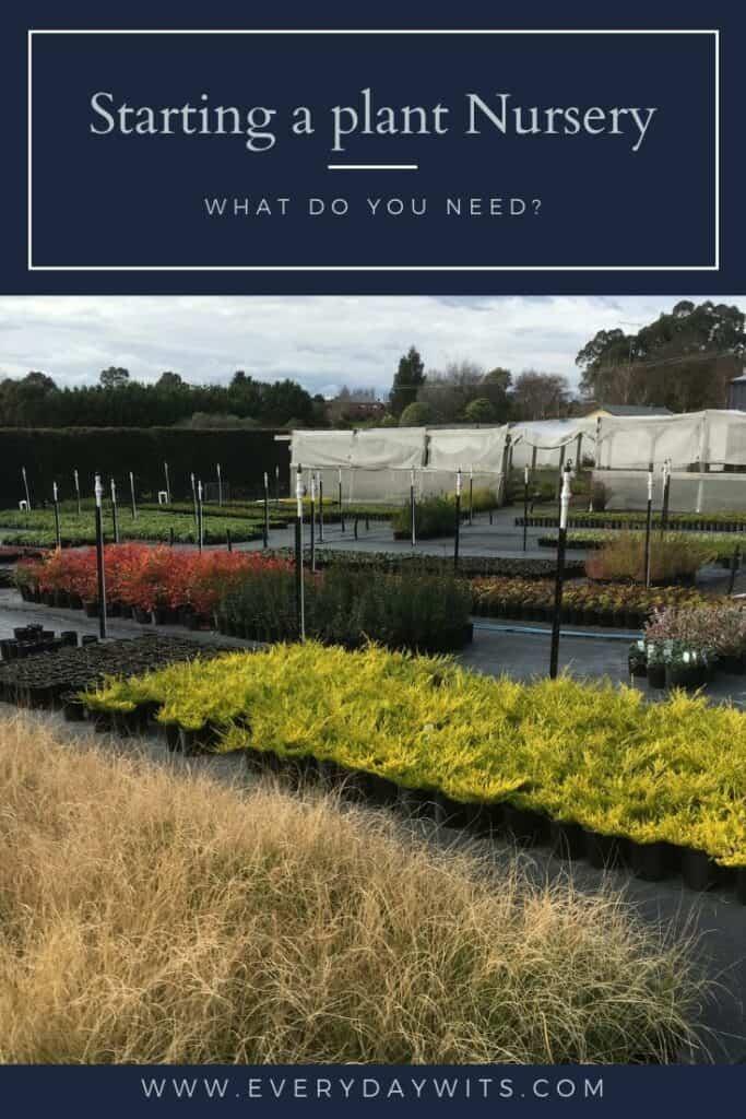 Starting a plant nursery