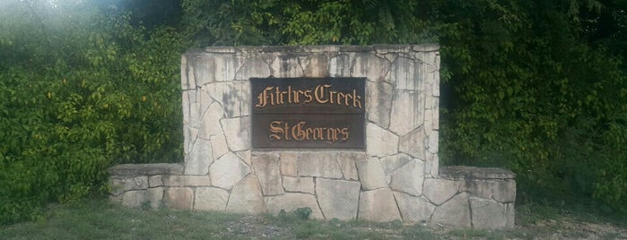 Fitches Creek: A Model Community – My Commitment for 2021 and Beyond