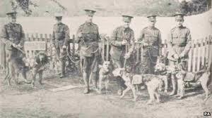 PHOENIX DOG TRAINING | A BRIEF HISTORY OF DOG TRAINING
