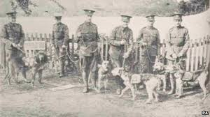 PHOENIX DOG TRAINING   A BRIEF HISTORY OF DOG TRAINING
