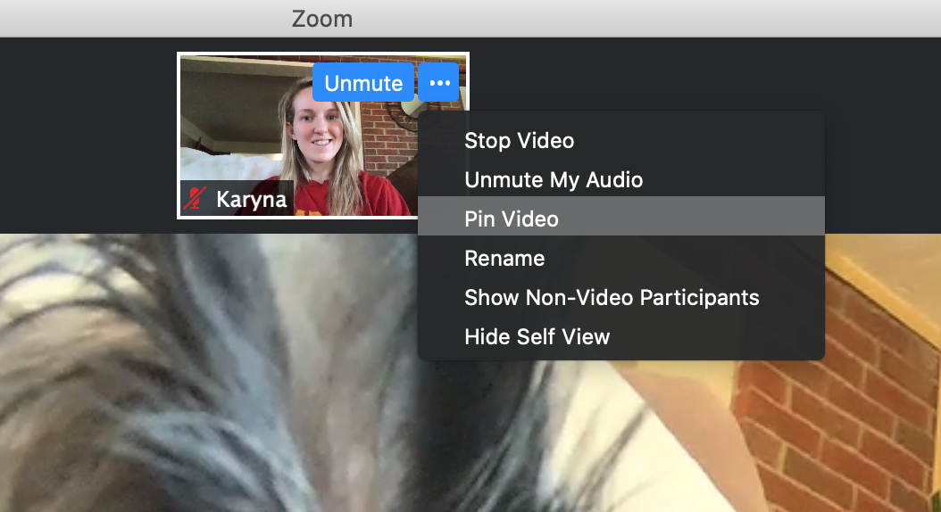 Zoom Pin Video