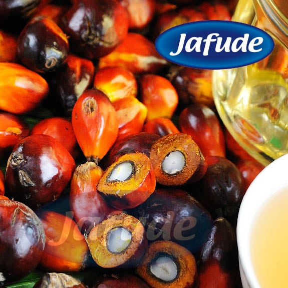 Cooking Oil Supplier in the Philippines