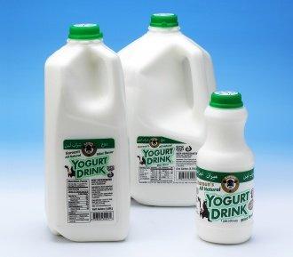 Karoun Mint Flavored Yogurt Drink