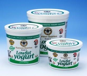 Karoun Lowfat Yogurt