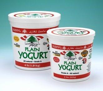 Plain Arz Yogurt