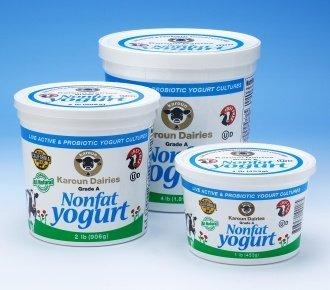 Karoun Non Fat Yogurt