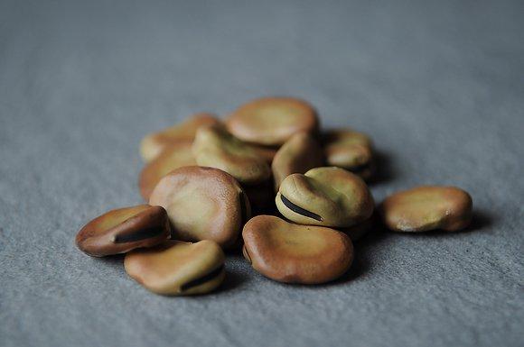 Dried Fava Beans Medium