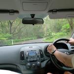 SYDNEY: Illawarra Fly