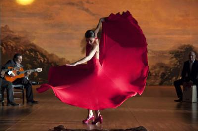 flamenco-flamenco-3