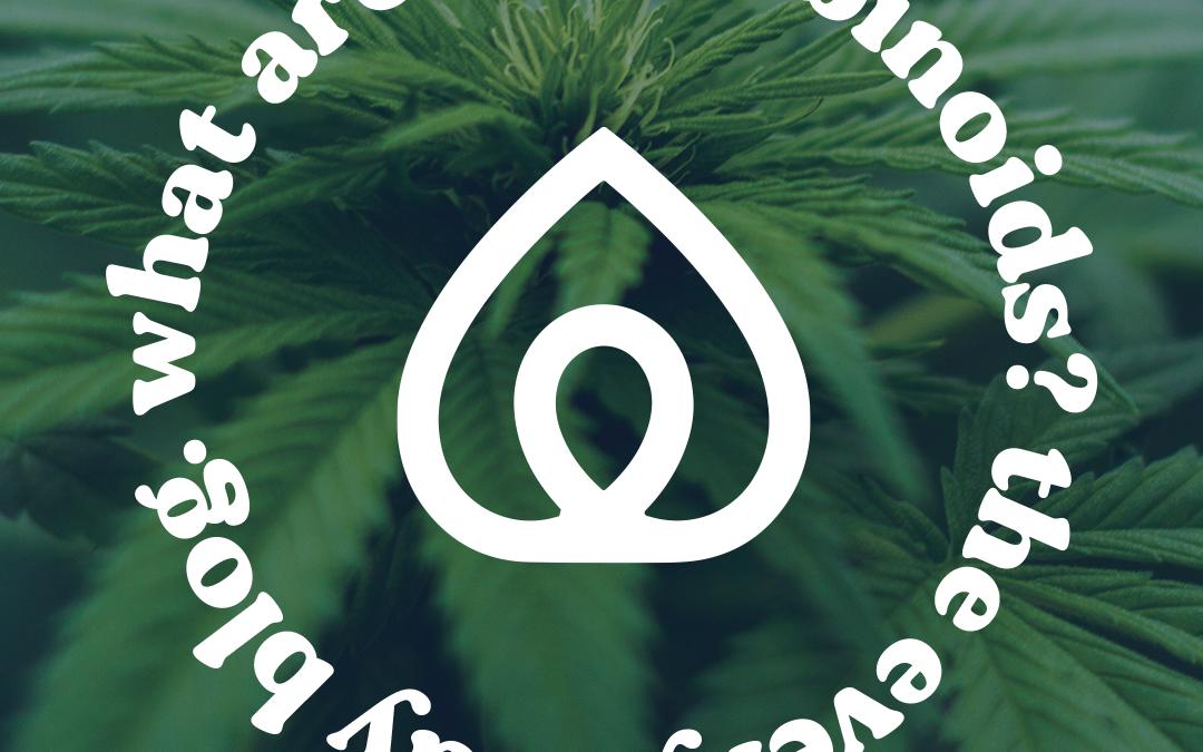 Cannabinoids & the Endocannabinoid System