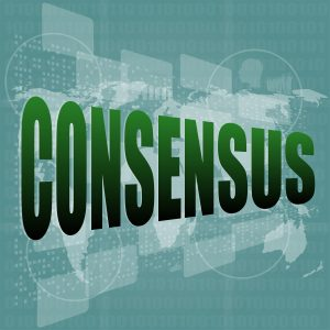 Consensus Decision-Making Process