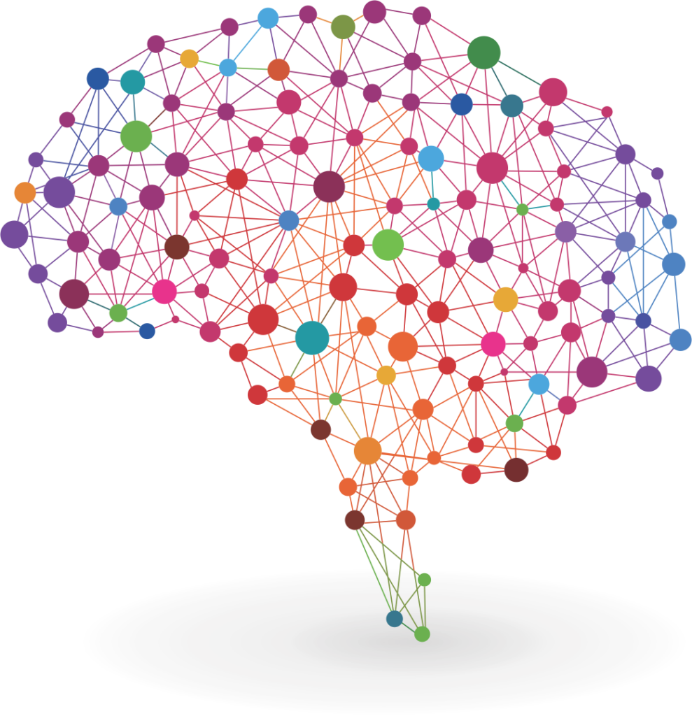 Brain network for Consumer Neuroscience