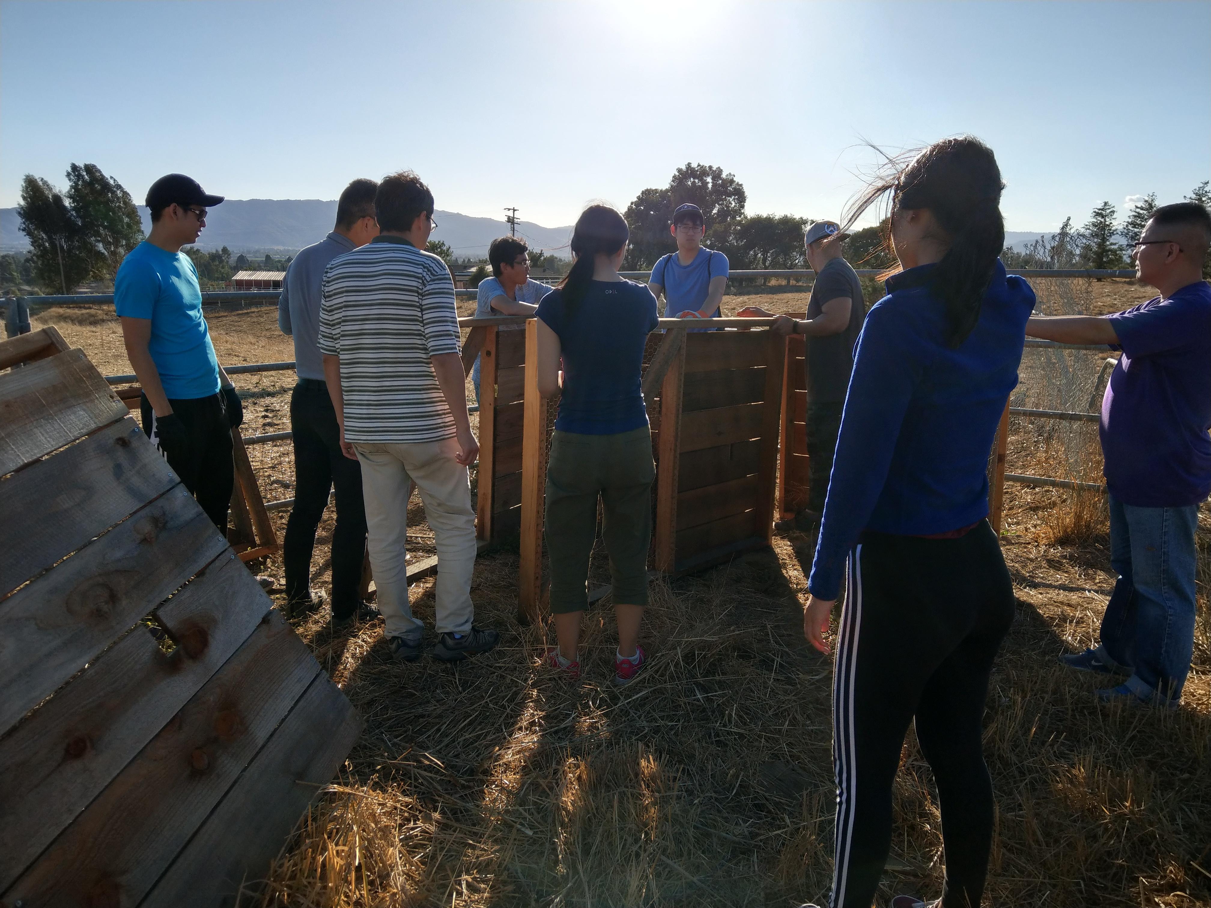 HOC1 help build chicken coop