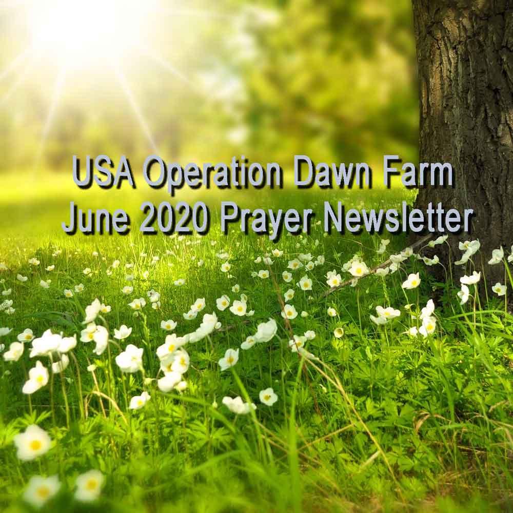 Prayer_202006