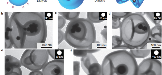 Scientists Create NanoRockets For Use Inside The Human Body
