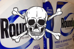 Roundup Herbicide Toxic To Fish In Parts Per Billion