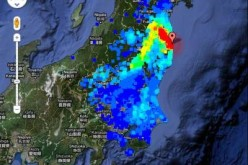Japan Issues Belated Ban On Radioactive Fukushima Beef After Allowing To Be Sold In Stores