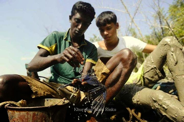 2-children-cleaning-oil-coated-bird
