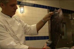 Video: Radiation in Pacific Seafood Prompts Restaurants To Remove from Menus