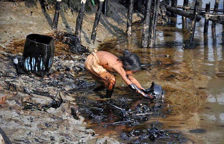 cleaning-up-the-sunbarbans-oil-spill