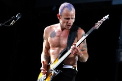 Red Hot Chili Peppers' Bassist is now a Beekeeper with over 200,000 Bees