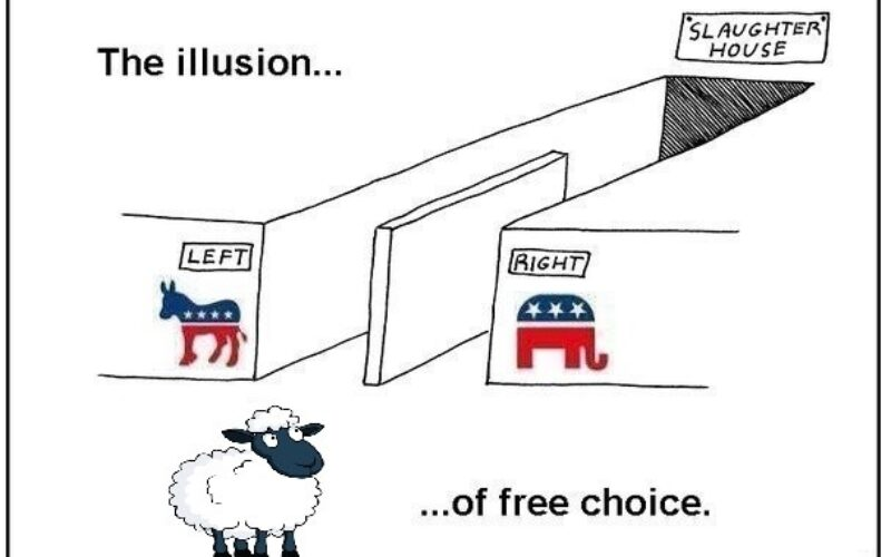 United States – The Illusion Of Choice, The Reality Of Fraud – Video Proof Elections Are Rigged