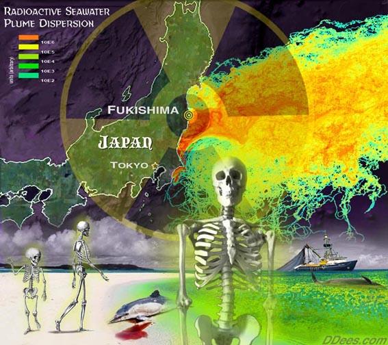 Fukushima Radiation Found In Massachusetts Rainwater