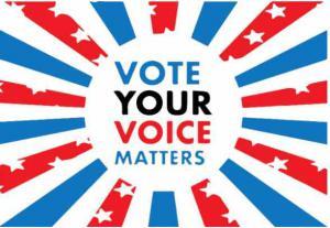 Vote Your Voice Matters (VYVM)