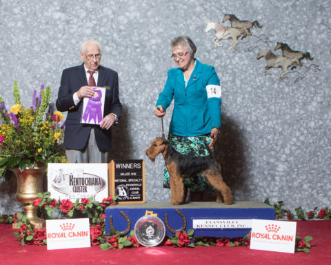 Winners Bitch/Bred By Exhibitor Brynmawr Chimes At Midnight Owners: Kathleen Rost, Jean Callens Breeders: Kathleen Rost, Jean Callens