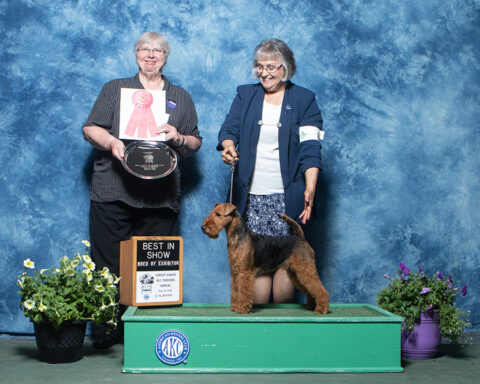 Northern Illinois Bred By Exhibitor Best in Specialty Show