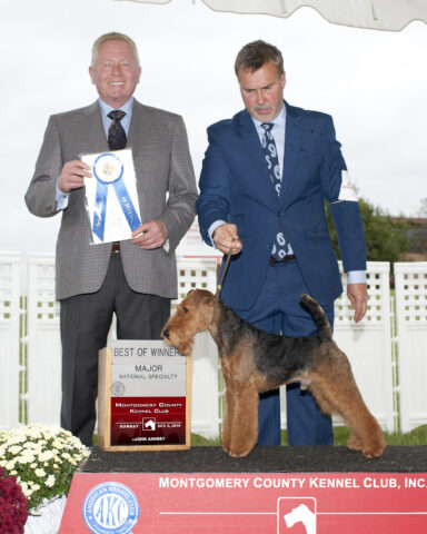 Winners Dog/Best of Winners:  Snoward's Tuff Enough.  Owner: Ann Bark.  Breeder:  Ann Bark
