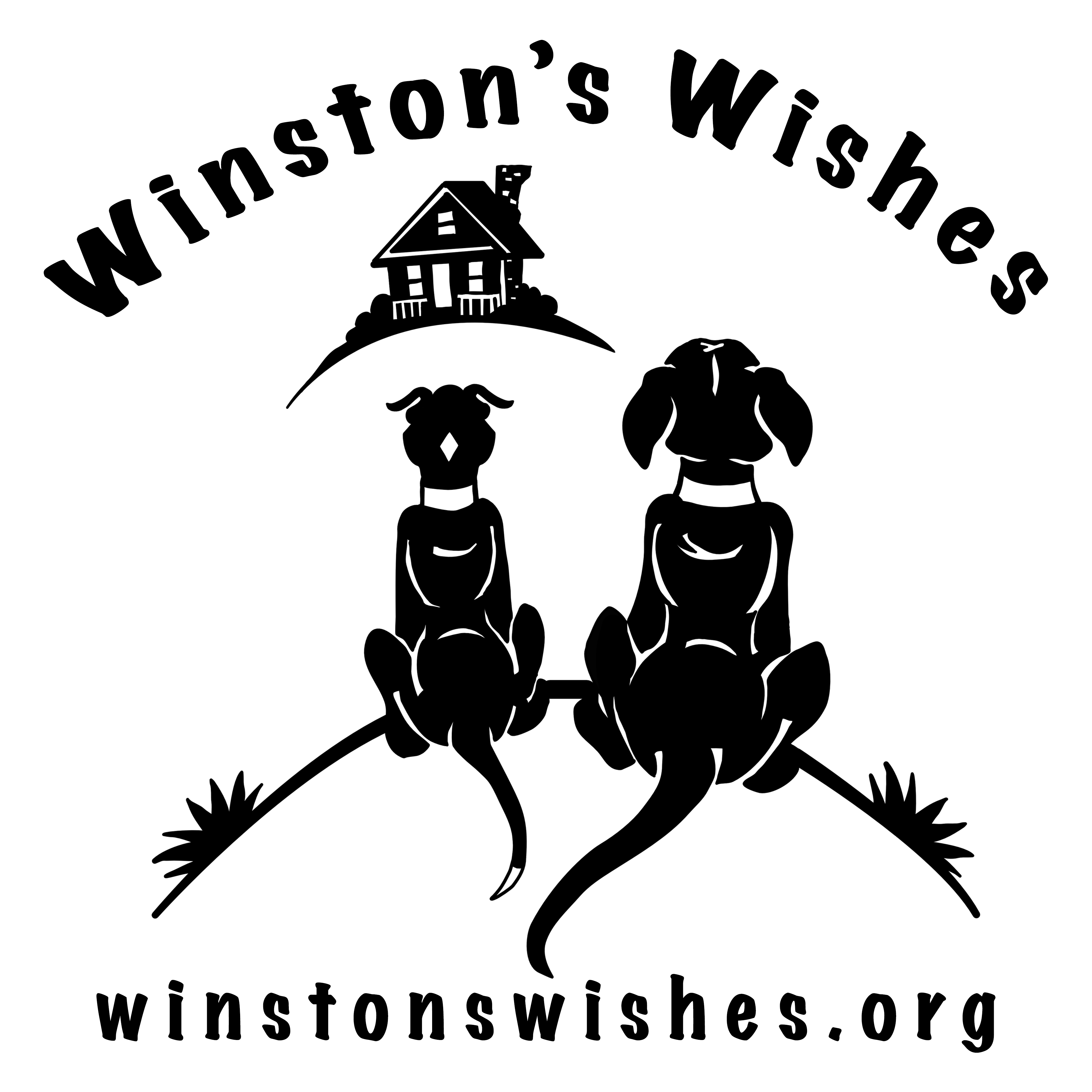 Winston's Wishes 2020 Black Letters